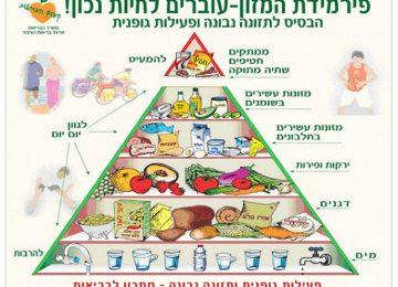 חידון קהוט- פירמידת המזון
