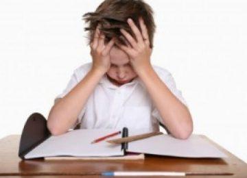 שאלון מקון בנושא לקיות למידה ומוגבליות