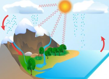 מחזור המים